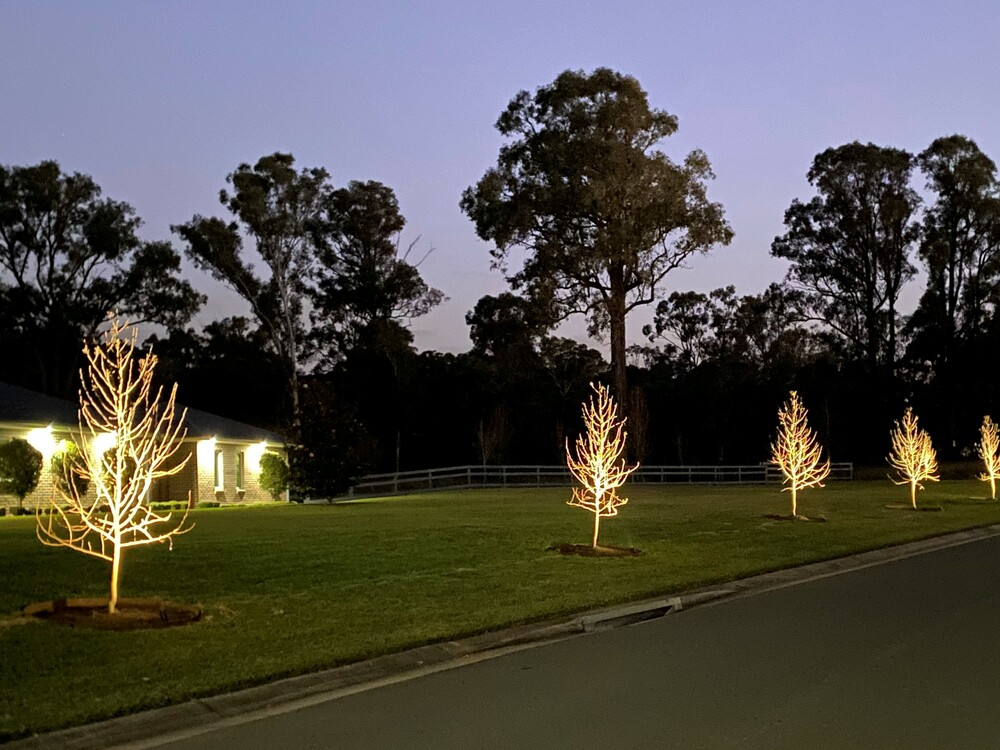 In ground lighting, Twin Creeks Estate